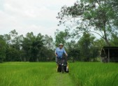 Paul with rice field